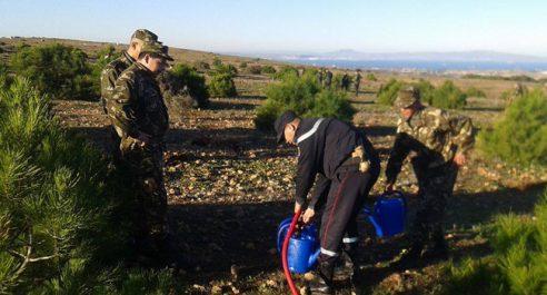 HASSI MAMECHE : L'Armée mène une opération de reboisement