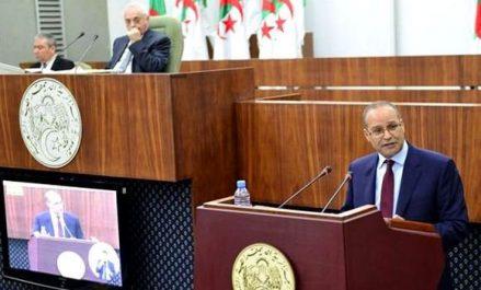 Bouazgui: valoriser les terrains forestiers et octroyer les permis d'exploitation