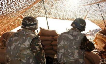 Un élément de soutien aux groupes terroristes arrêté à Souk Ahras (MDN)
