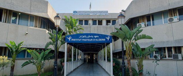 Un mort et 35 cas de H1N1 confirmes par l'Institut Pasteur : La grippe porcine est de retour…