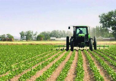 Agriculture : La production locale couvre 80 % de la demande nationale