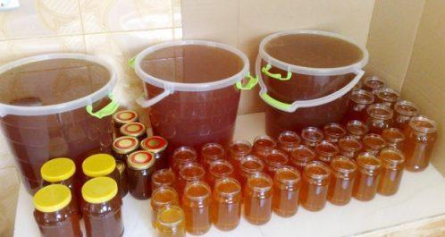 Marché du miel à Chlef : Un produit de qualité pour encourager à consommer local