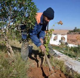 Il annonce un plan gouvernemental spécial pour «BOOSTER» l'activité à ouargla : Necib au secours de l'agriculture sahraouie