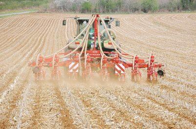 Terres agricoles en Jachère à Sétif : 7 000 ha récupérés