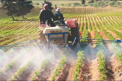 Béjaïa: Bouazghi insiste sur l'amélioration des rendements agricoles