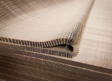 Ford : Une structure en papier ultralégère et plus solide que le métal dans l'EcoSport