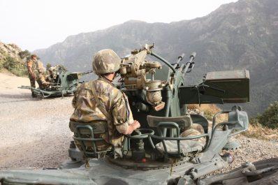 Deux terroristes abattus par l'Armée à Jijel