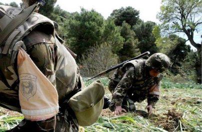 Deux grenades détruites à Khenchela (MDN)