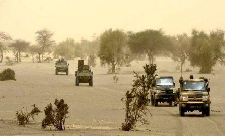 ONU: la communauté internationale déterminée à aider le Sahel dans sa lutte contre le terrorisme