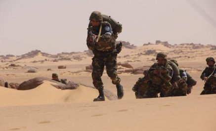 Reddition d'un terroriste armé à Tamanrasset