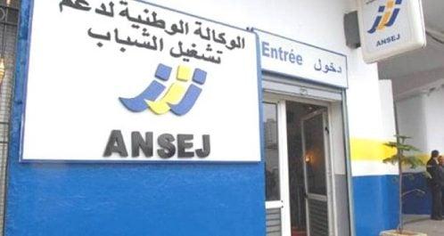 Dispositif ANSEJ : Plus de 100 émigrés ont déposé des dossiers