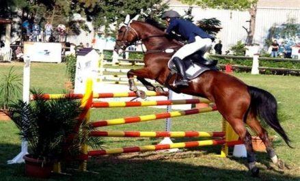 Des séances de travail pour promouvoir les sports équestres