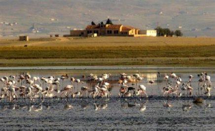 Zones humides: le PNEK, un réservoir exceptionnel de la biodiversité dans la Méditerranée