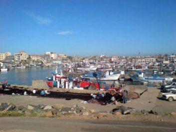 Aspirant à élargir et à diversifier ses activités économiques : Le port de Zemmouri El Bahri se lance dans l'exportation