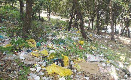 Bordj Bou-Arréridj : Les dépôts sauvages d'ordures en forêt, une fatalité ?