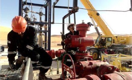 Ould Kaddour : la stratégie de Sonatrach à l'horizon 2030 «en phase de maturation»