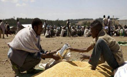 Les souffrances liées à la faim dans les zones de conflit continuent de s'intensifier