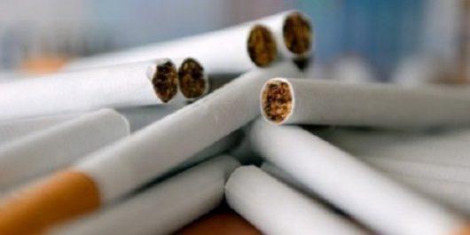 TEBESSA : Saisie de cigarettes de marque étrangère