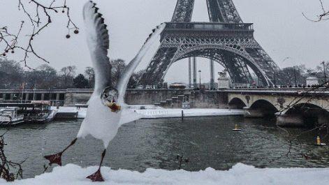 Neige et verglas entraînent l'annulation de 200 vols au départ de Paris