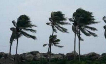 Des vents assez forts toucheront une dizaine de wilayas du pays à partir de vendredi