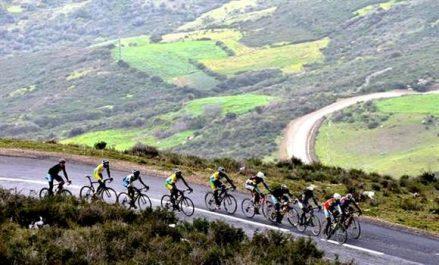 Course régionale cycliste des ligues de Blida et Aïn Defla: Laâgab domine la compétition