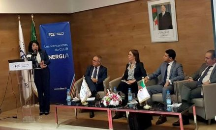 Energies renouvelables : l'Algérie veut se doter de sa propre industrie
