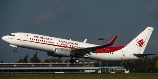Un vol d'Air Algérie fait demi-tour à cause des… oiseaux
