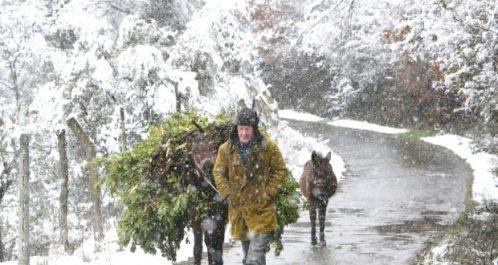 L'Europe continue à grelotter sous le froid sibérien : Au moins 40 morts