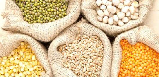 Agriculture : Hausse de la surface consacrée aux légumes secs à Constantine