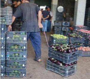 Après 20 ans d'attente : Le marché de gros de Tizi Ouzou inauguré aujourd'hui