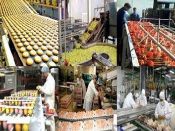 Agroalimentaire : Le secteur occupe 23% de la population active en Algérie