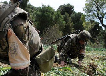 Boumerdes et Tizi-Ouzou : Deux bombes artisanales détruites