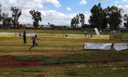 Championnats d'Afrique de cross: le Kenya et l'Ethiopie raflent la mise, l'Algérie loin derrière