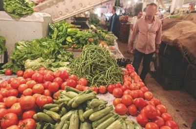 Tomates, poivrons, courgettes… les légumes de serres en abondance