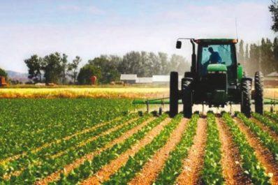 Ouargla : Plusieurs opérations de développement agricole réalisées par le CDARS