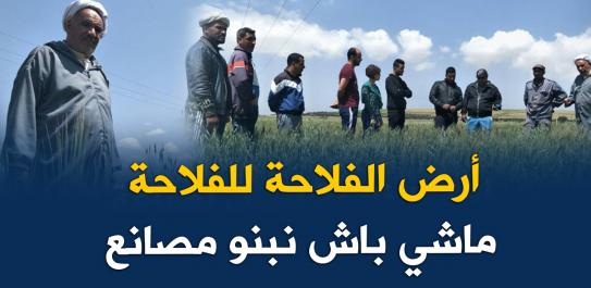Vidéo: Un agriculteur dénonce l'expropriation de son terrain pour la construction de l'usine Peugeot à Oran !