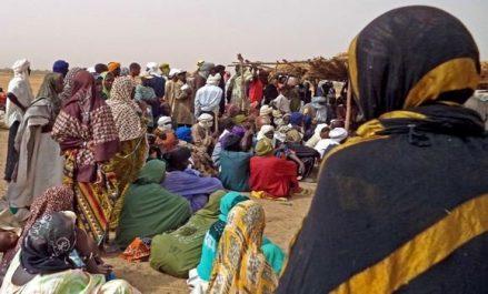 L'Algérie «fait plus que son devoir» aux côtés des Maliens !
