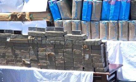 Plus de 7 kg de cannabis traité saisis à Sidi Bel Abbes, Tlemcen et Ouargla