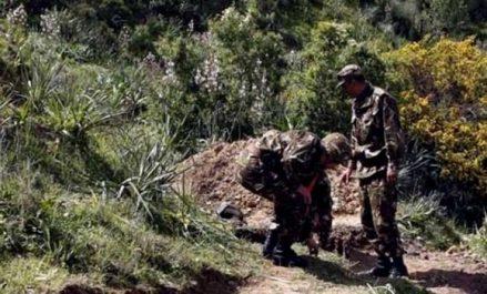 Six (06) bombes de confection artisanale découvertes et détruites à Batna (MDN)