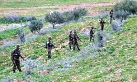 Important bilan enregistré durant le mois de mars par l'anp : Quatre terroristes arrêtés et sept autres désarmés