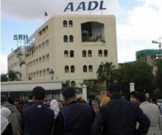 Souscripteurs de 22 wilayas invités à retirer les pré-affectations, AADL 2 : la dernière ligne droite