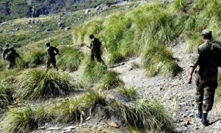 Destruction de 2 abris pour terroristes à Skikda (MDN)