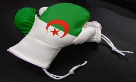 Boxe/Championnats arabes: six boxeurs algériens en finale