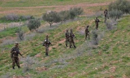 Deux éléments de soutien aux groupes terroristes appréhendés à Batna (MDN)