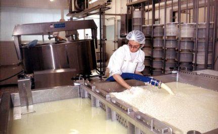 Pénurie du lait: les quotas de la poudre, gonflés par l'etat