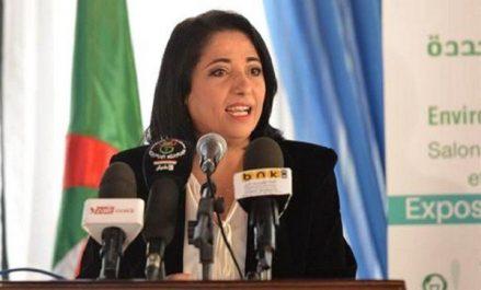 Le Gouvernement a approuvé le projet du Complexe de valorisation énergétique des déchets du Grand Alger