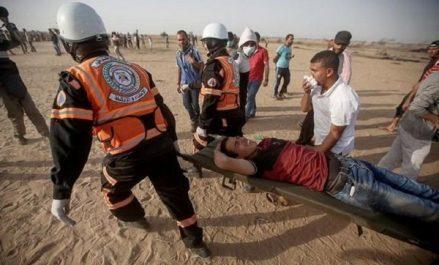 Agression israélienne: 14 hôpitaux débordés, des milliers de blessés empêchés de quitter Ghaza