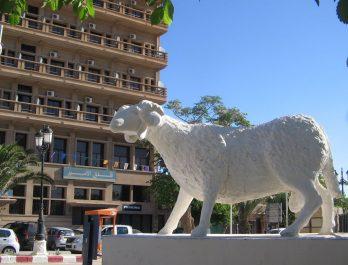 Stations de gravures rupestres à Djelfa: destination touristique en quête de valorisation