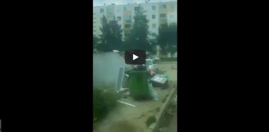 Vidéo: Un enfant se nourrit des ordures fait le buzz sur les réseaux sociaux !