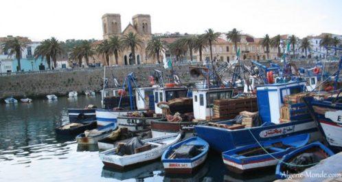 Opération ports-bleus : Près de 3 tonnes de déchets collectés à El Tarf